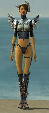 Assassin Asuran Armor F gray chest feet front.jpg