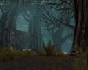 Echovald Forest.jpg