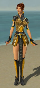 Elementalist Canthan Armor F dyed front.jpg