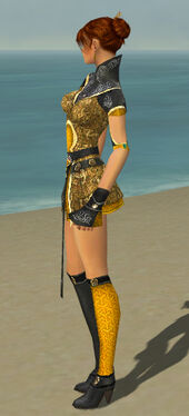 Elementalist Canthan Armor F dyed side.jpg