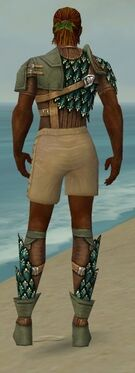 Ranger Drakescale Armor M gray chest feet back.jpg
