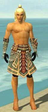 Ritualist Elite Imperial Armor M gray arms legs front.jpg