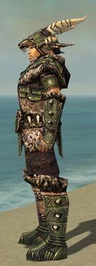 Warrior Elite Charr Hide Armor M gray side alternate.jpg