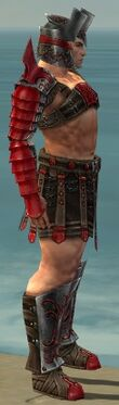 Warrior Elite Gladiator Armor M dyed side.jpg