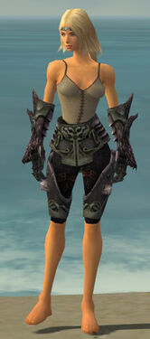 Warrior Primeval Armor F gray arms legs front.jpg