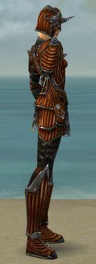Warrior Wyvern Armor F dyed side.jpg
