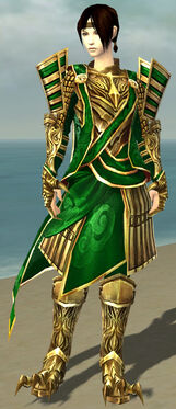 Dragonguard F dyed front.jpg