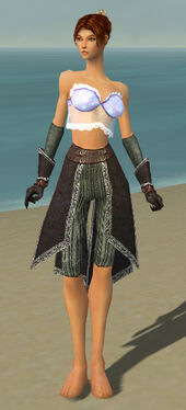 Elementalist Ancient Armor F gray arms legs front.jpg