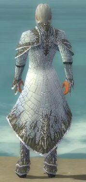 Elementalist Elite Iceforged Armor M gray back.jpg