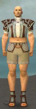 Monk Censor Armor M gray chest feet front.jpg