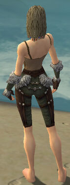 Ranger Elite Fur-Lined Armor F gray arms legs back.jpg