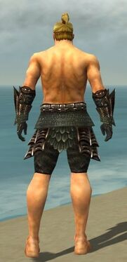 Warrior Elite Dragon Armor M gray arms legs back.jpg