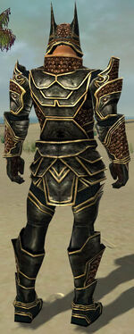 Warrior Kurzick Armor M gray back.jpg