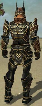 Warrior Kurzick Armor M gray back.jpg