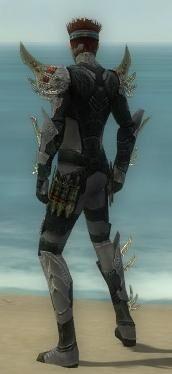 Assassin Elite Imperial Armor M gray back.jpg