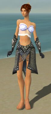 Elementalist Elite Stoneforged Armor F gray arms legs front.jpg