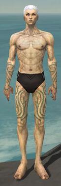 Necromancer Scar Pattern Armor M gray arms legs front.jpg