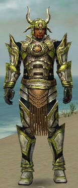 Warrior Elite Sunspear Armor M dyed front.jpg