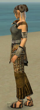 Monk Sunspear Armor F gray side.jpg