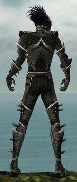 Necromancer Kurzick Armor M gray back.jpg