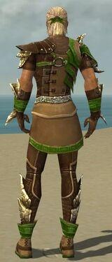 Ranger Asuran Armor M dyed back.jpg