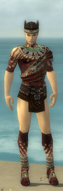 Ritualist Elite Exotic Armor M gray chest feet front.jpg