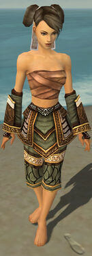 Monk Elite Canthan Armor F gray arms legs front.jpg