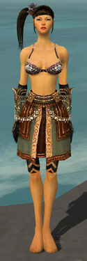 Ritualist Imperial Armor F gray arms legs front.jpg