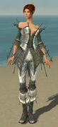 Elementalist Primeval Armor F gray front.jpg