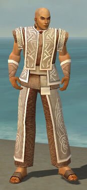 Monk Tyrian Armor M dyed front.jpg