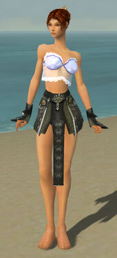 Elementalist Canthan Armor F gray arms legs front.jpg