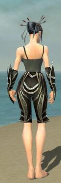 Necromancer Elite Sunspear Armor F gray arms legs back.jpg