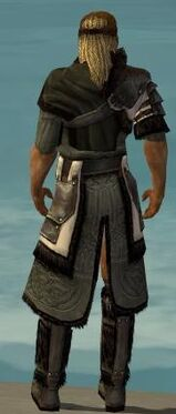 Ranger Norn Armor M gray chest feet back.jpg