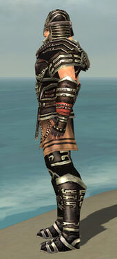 Warrior Ancient Armor M gray side.jpg