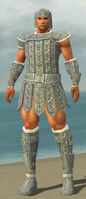 Warrior Ascalon Armor M gray front.jpg