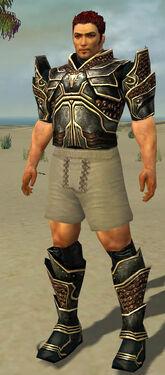 Warrior Kurzick Armor M gray chest feet front.jpg