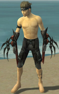Assassin Ancient Armor M gray arms legs front.jpg