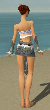 Elementalist Iceforged Armor F gray arms legs back.jpg