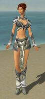 Elementalist Iceforged Armor F gray front.jpg