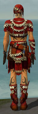 Ritualist Seitung Armor M dyed back.jpg