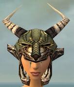 Warrior Elite Charr Hide Armor F gray head front.jpg