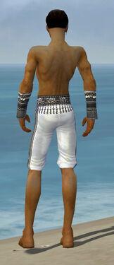 Elementalist Luxon Armor M gray arms legs back.jpg