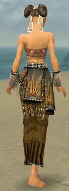 Monk Sunspear Armor F gray arms legs back.jpg