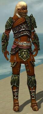 Ranger Elite Luxon Armor M dyed front.jpg