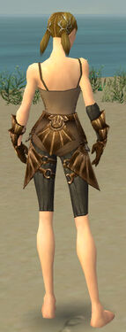 Ranger Sunspear Armor F gray arms legs back.jpg