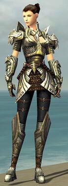 Warrior Deldrimor Armor F gray front.jpg