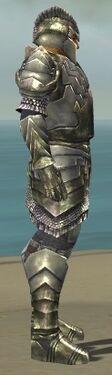 Warrior Templar Armor M gray side.jpg