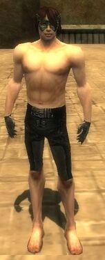 Mesmer Elite Sunspear Armor M gray arms legs front.jpg
