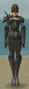 Warrior Elite Platemail Armor F gray front.jpg
