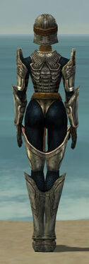 Warrior Sunspear Armor F gray back.jpg